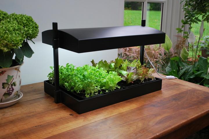 Гидропонная установка для выращивания растений