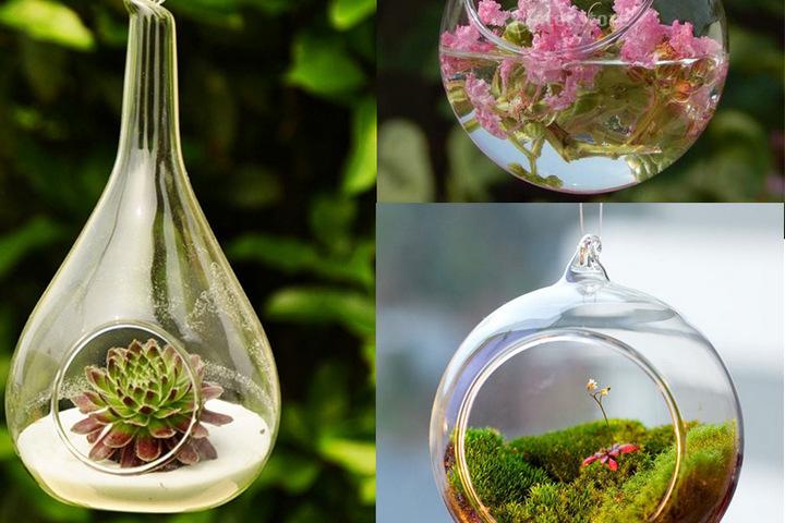 Маленький подвесной флорариум