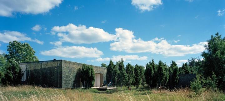 Дом с изображениями деревьев на фасаде