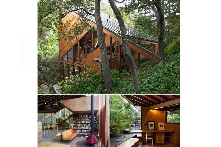 Лесной дом в современном стиле