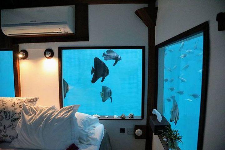 Вид из окна под водой