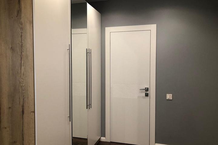 Платяной шкаф в Холле и межкомнатная дверь