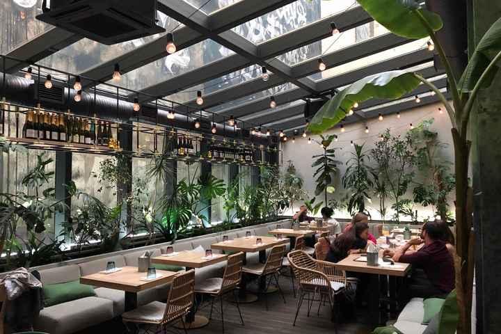 Крытая терраса ресторана с джунглями