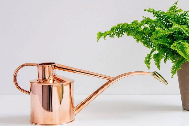 Стильная лейка для растений