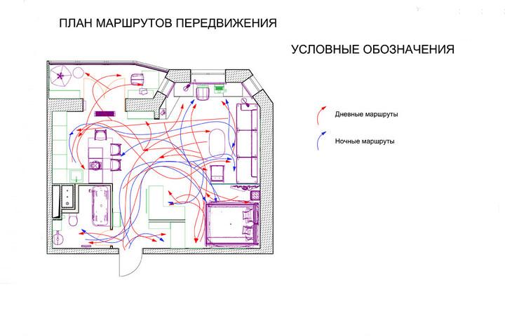 Карта перемещений в дневное и ночное время