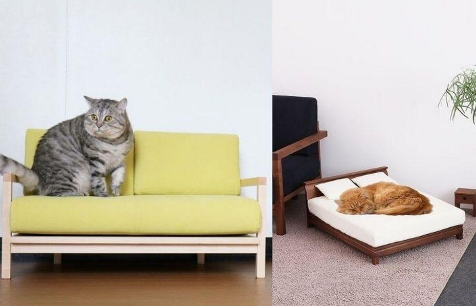 Диван и кровать с ортопедическим матрасом для кота